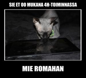 Nuoret keksivät iskeviä meemitekstejä kuviin, joissa komeili yhdistyksen maskotti Nile-kissa. Meemejä hyödynnettiin hankkeen viestinnässä.